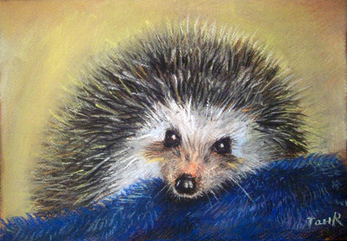 Картинки сухой пастелью животные