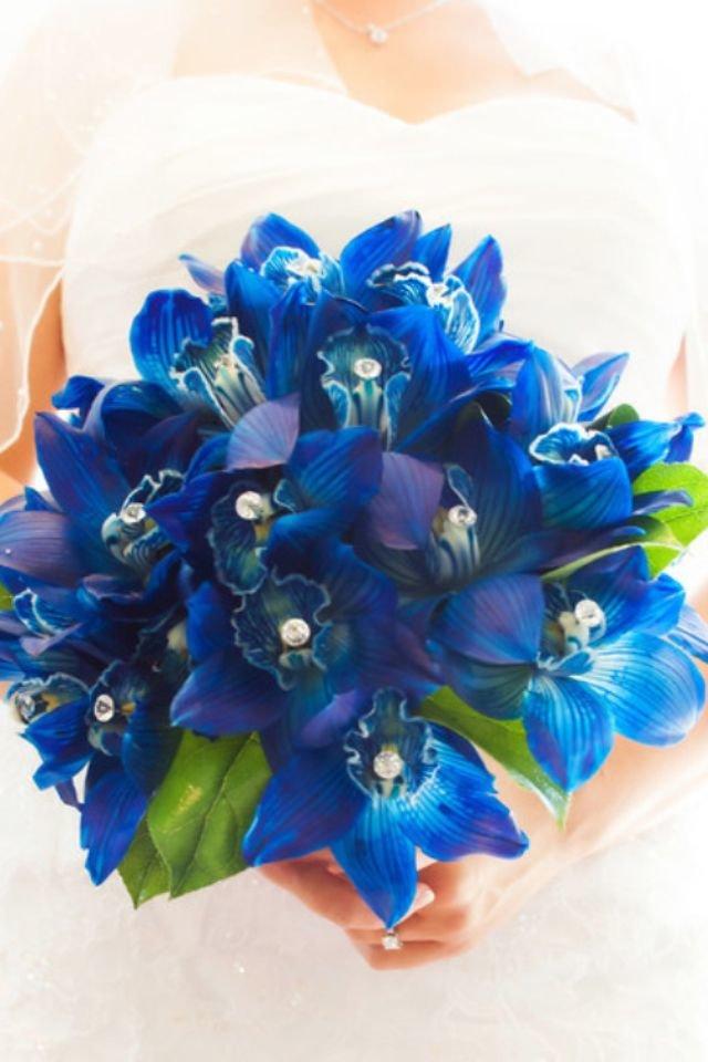 Букеты из синих орхидей спб, купить беларуси