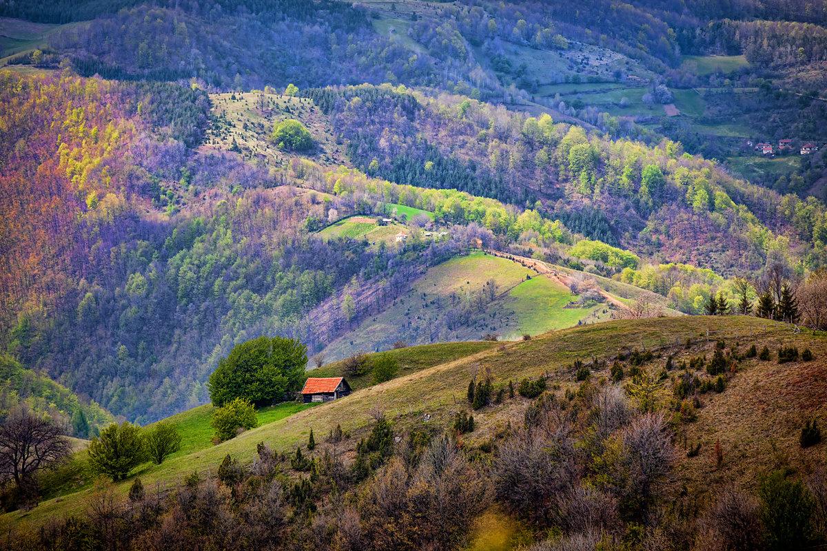 Алтай горы и природа картинки