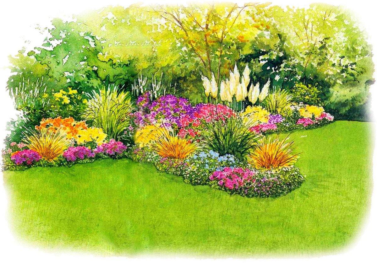 этого цветочный газон в картинках сегодняшний день