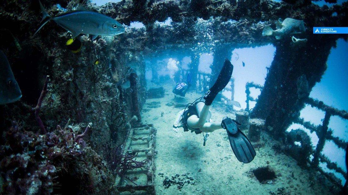 подводное фото затонувших кораблей найдёте большом ассортименте