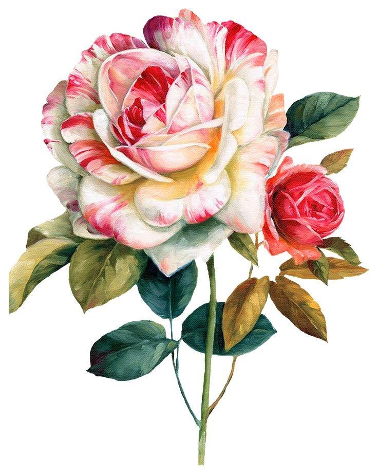 Для, открытки с цветами для печати