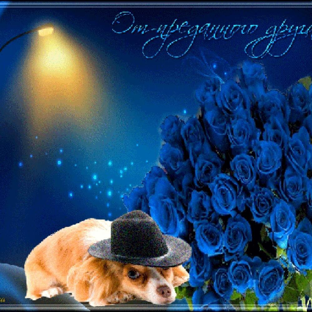 Поздравления днем, открытки большие другу