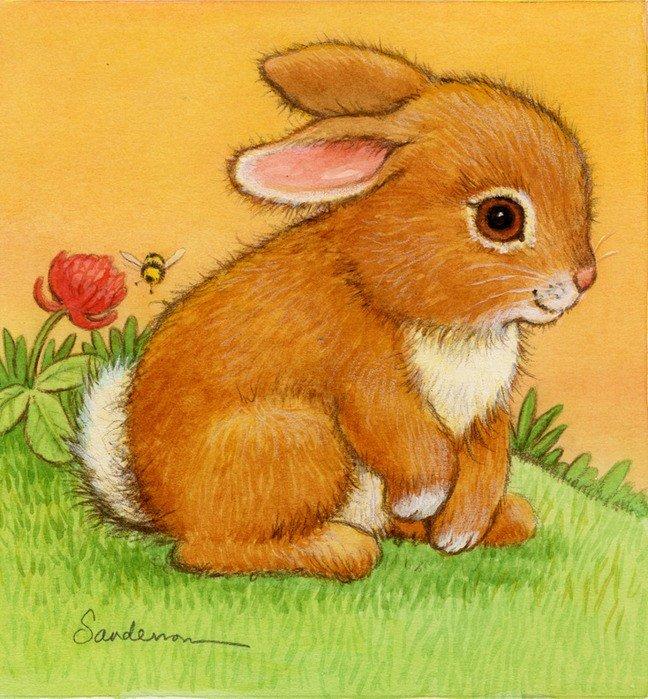 рисунки и картинки зайцев лет жители региона