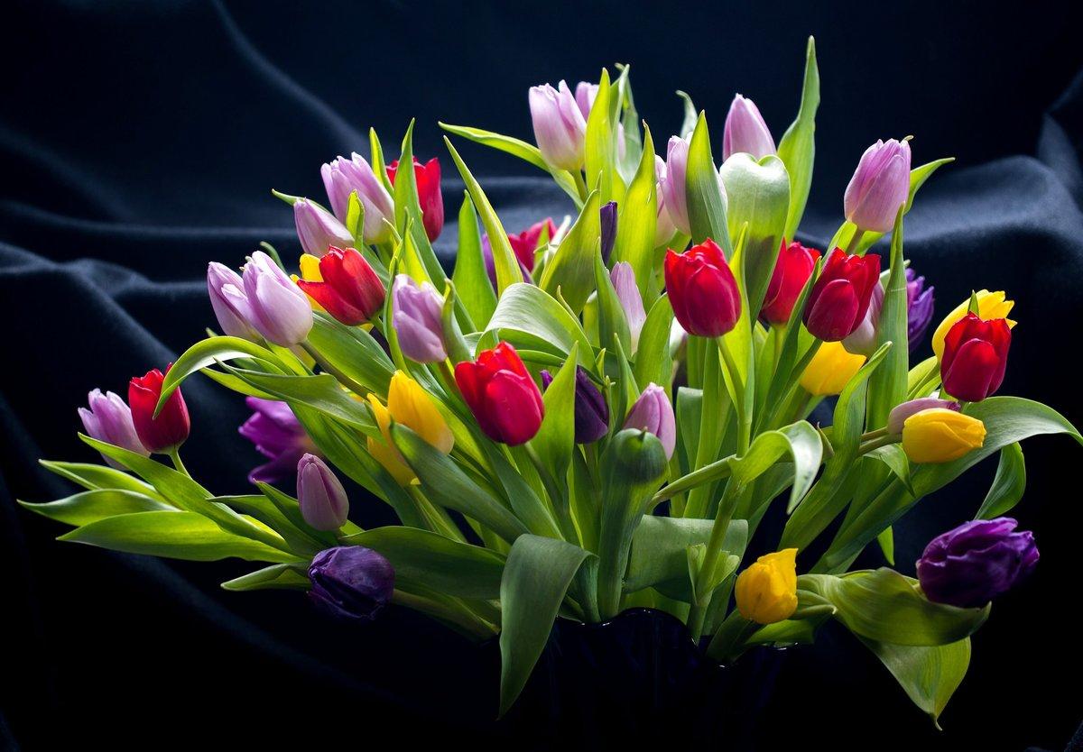 считает букет тюльпаны фото картинки стен плавно