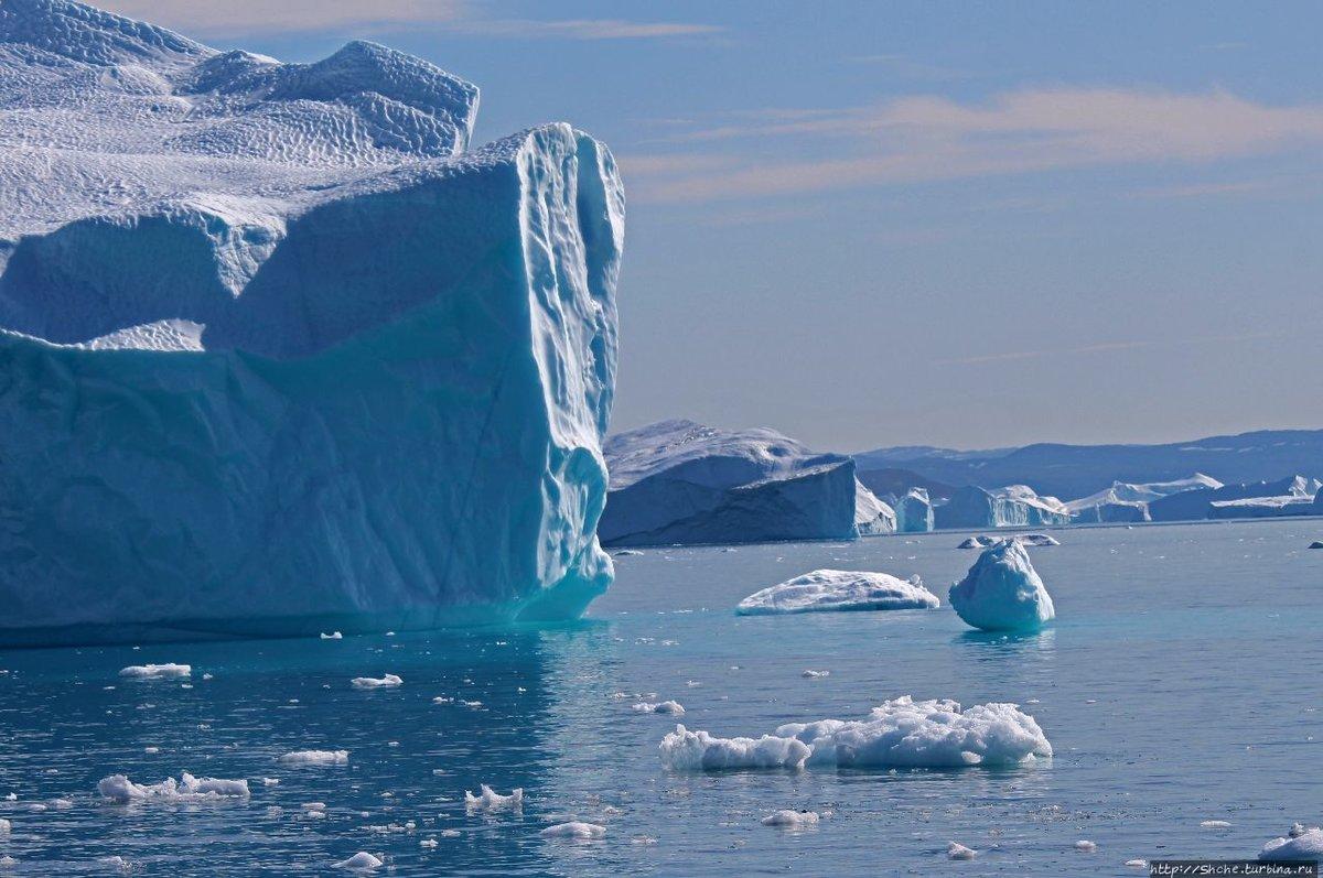 северно ледовитый океан с картинками это ресторан-пивоварня, где