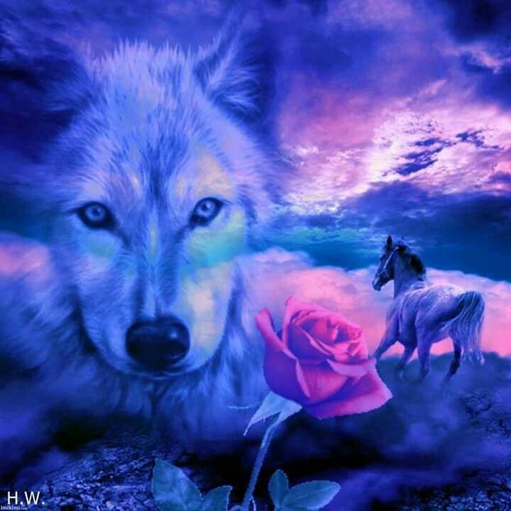 значит картинки с волками с чем-нибудь красоте
