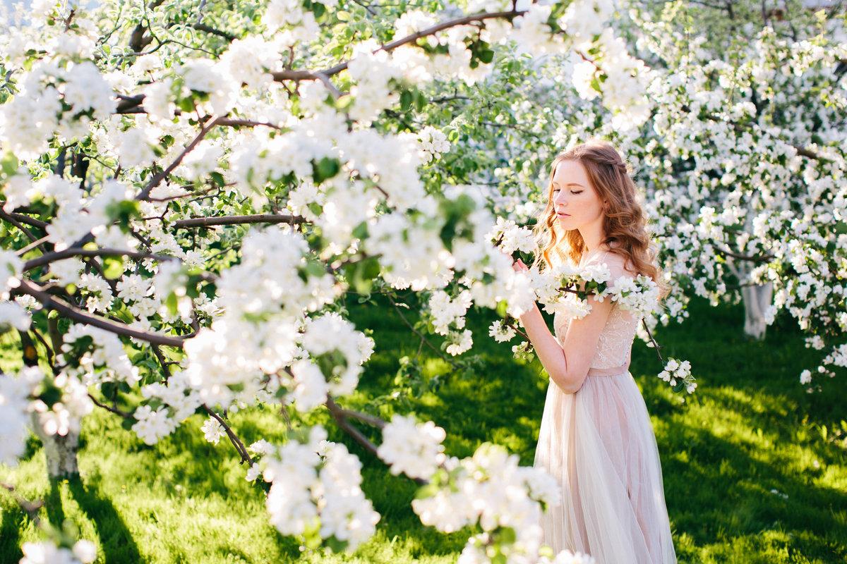 обработка фото с цветущими деревьями дела