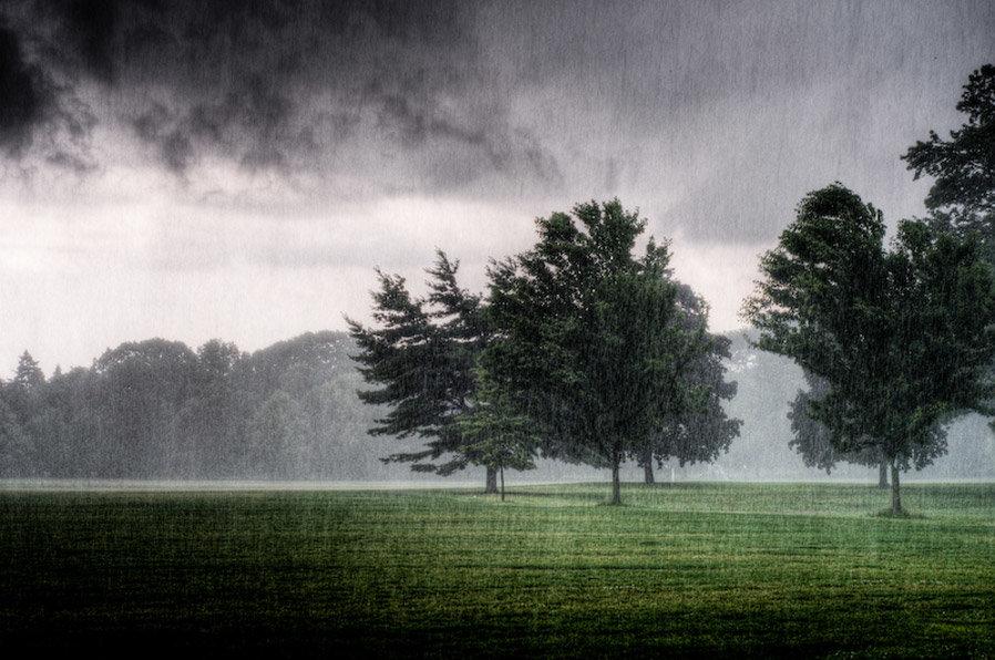 Часть, картинки дождь в поле анимация