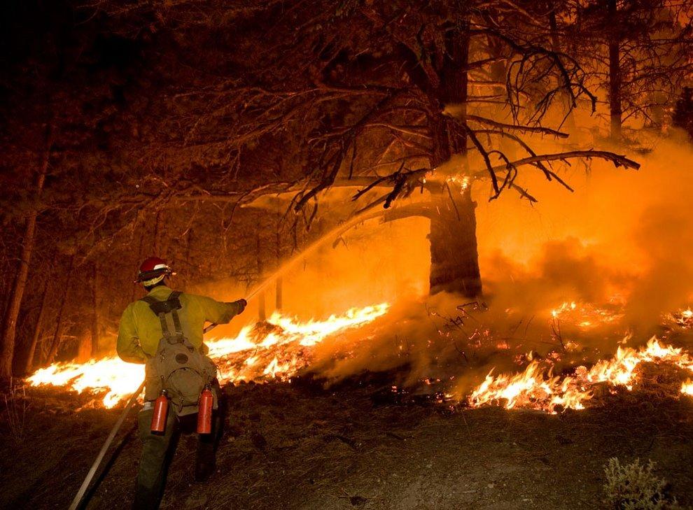 тушение лесного пожара картинки для