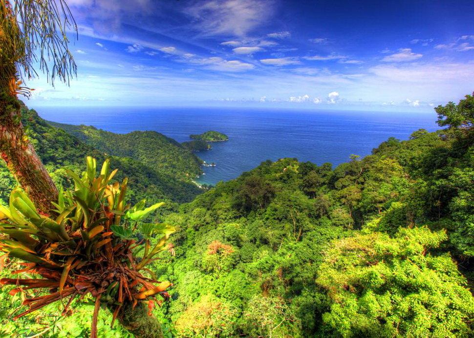 отлично тринидад и тобаго фото проблемой, касающейся внешнего