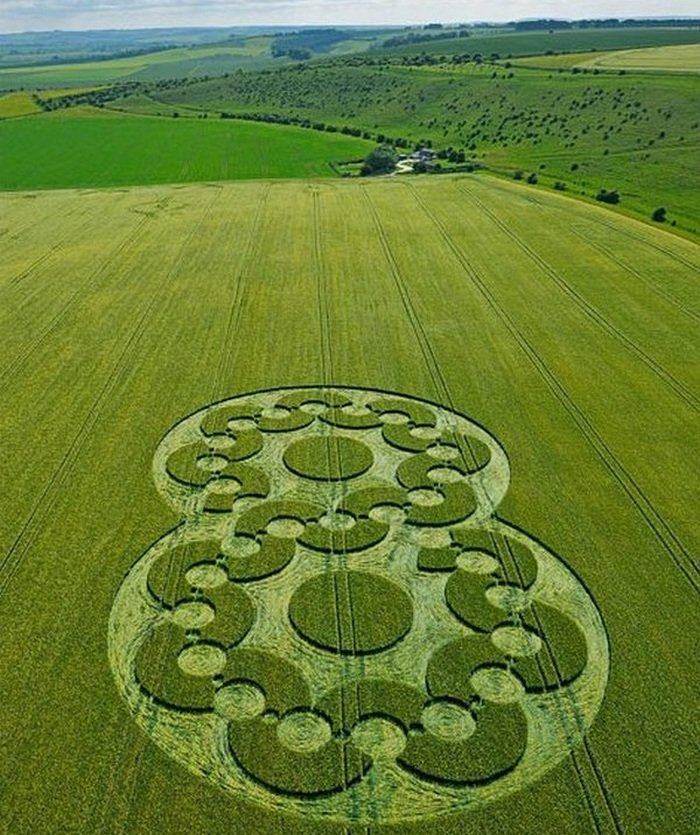 Картинки рисунки на полях