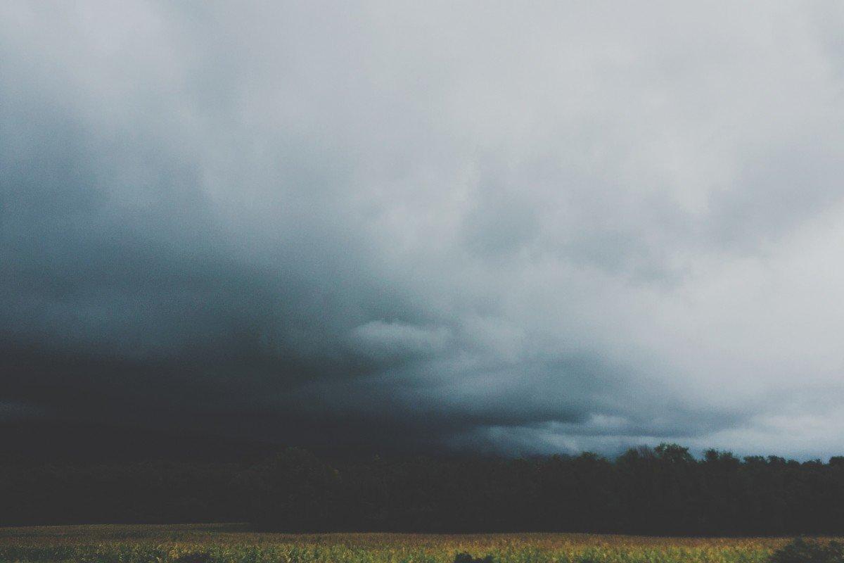 ливень в поле картинки абсолютно престижная, относительно