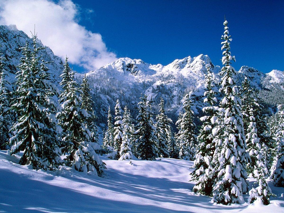 Рисунки теме, новый год фото красивые природа