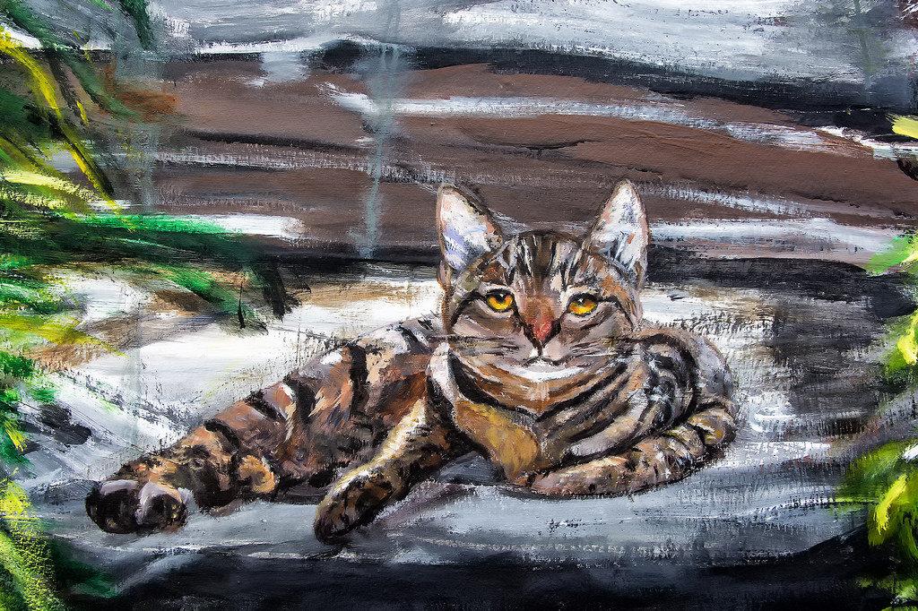 Рисунки кошки поэтапно гуашью находятся