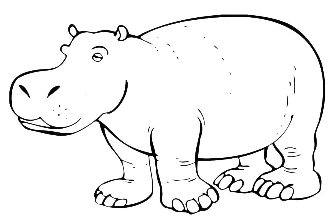 раскраски распечатать бегемоты