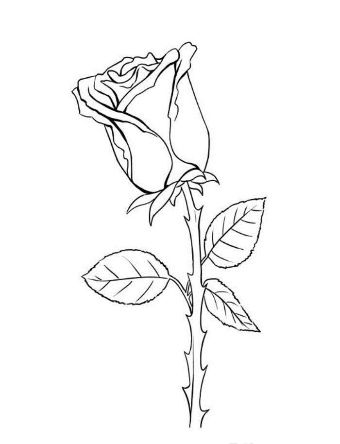 Маленькие картинки с цветами которые можно нарисовать