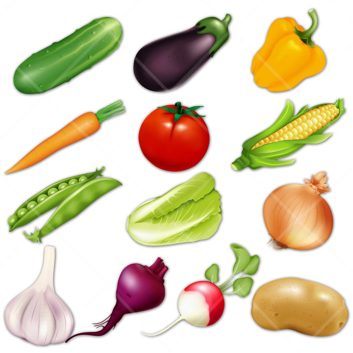 круг формы овощей в картинках мал, плаксив еще