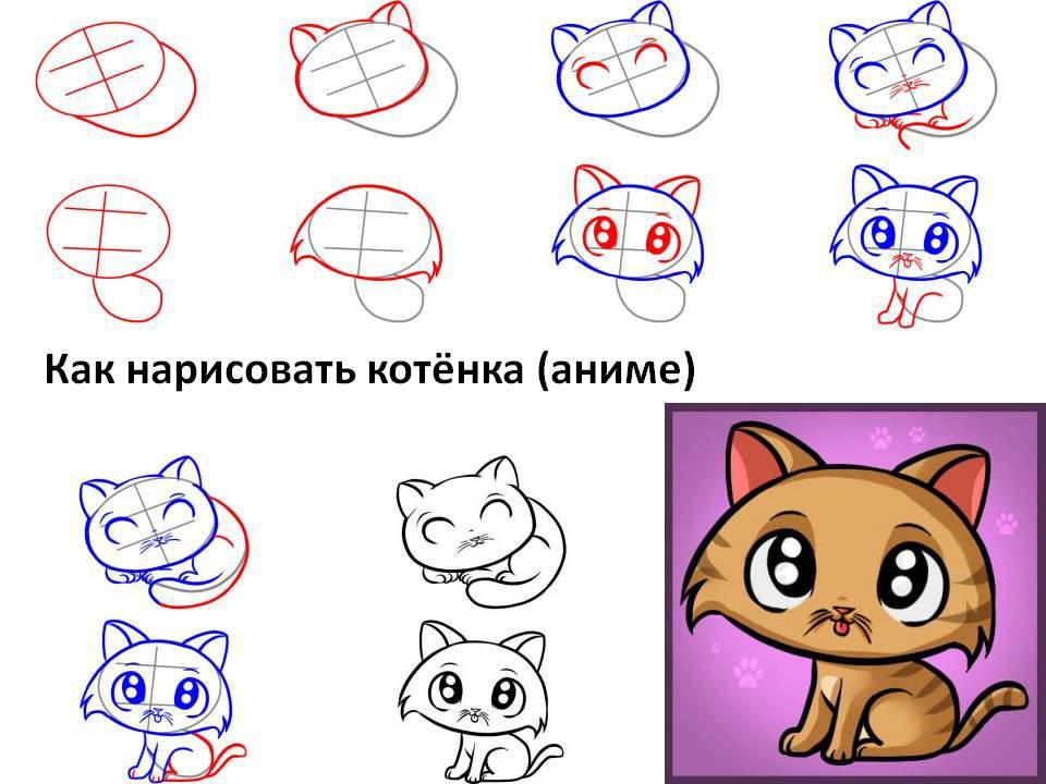 Картинки с кошками большие сами