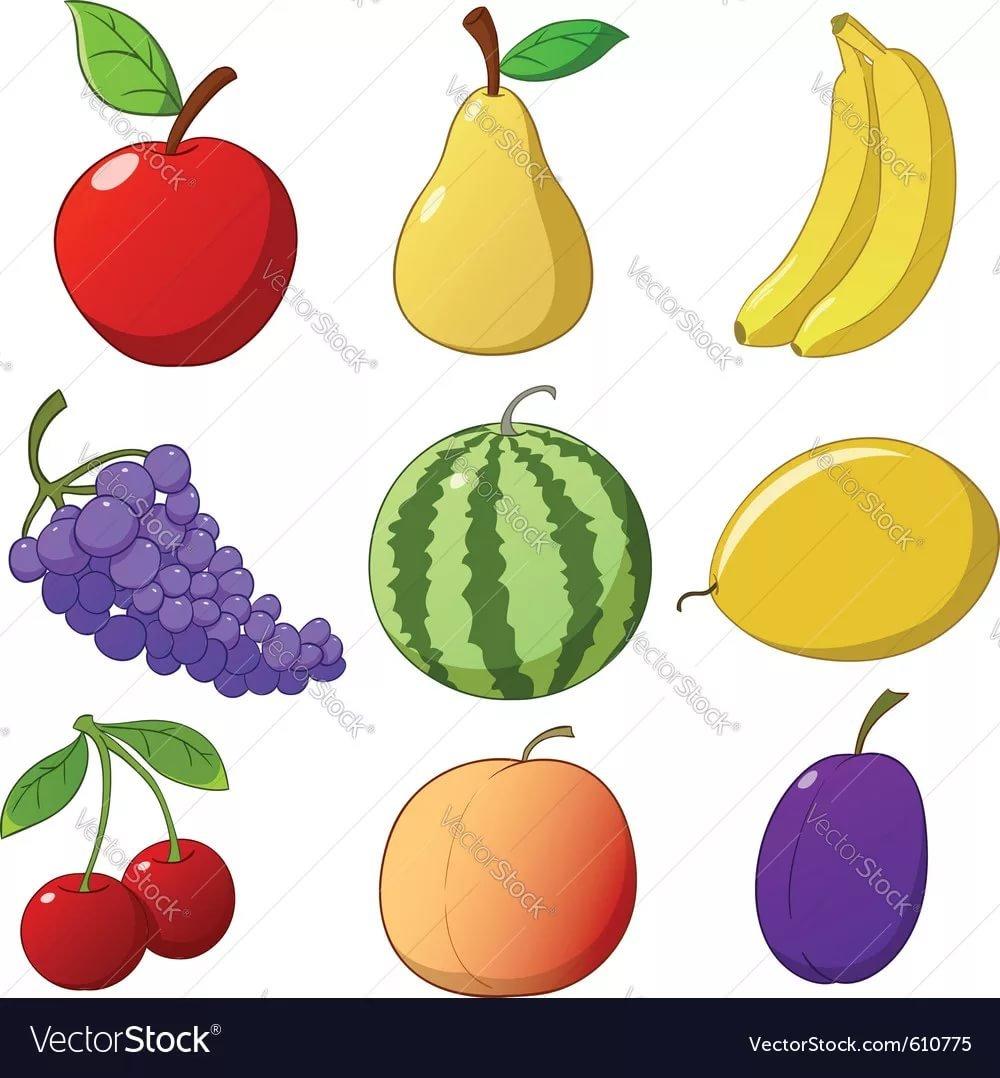 Drawn fruit - PinArt Fruit and vegetable coloring book, frui\