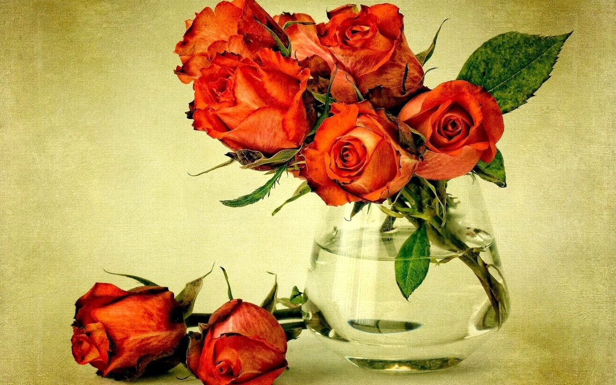 Открытки простые с цветами