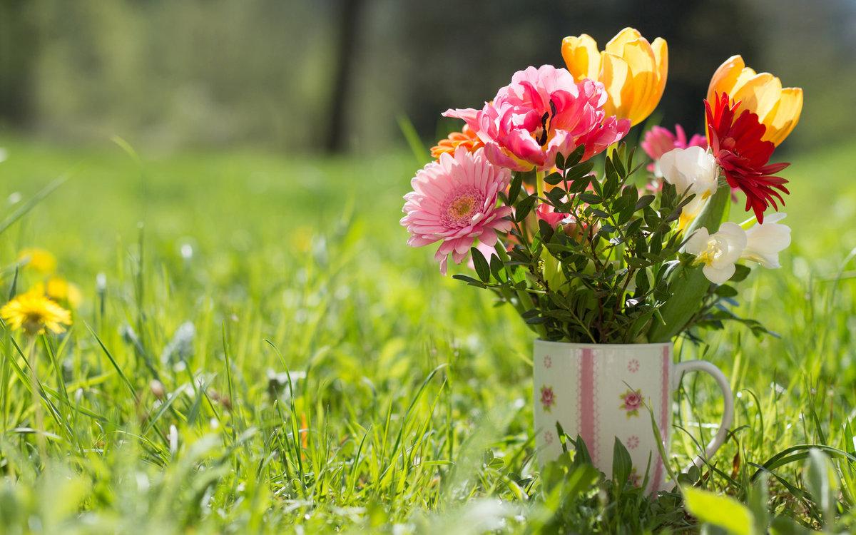 Среда картинки с цветами