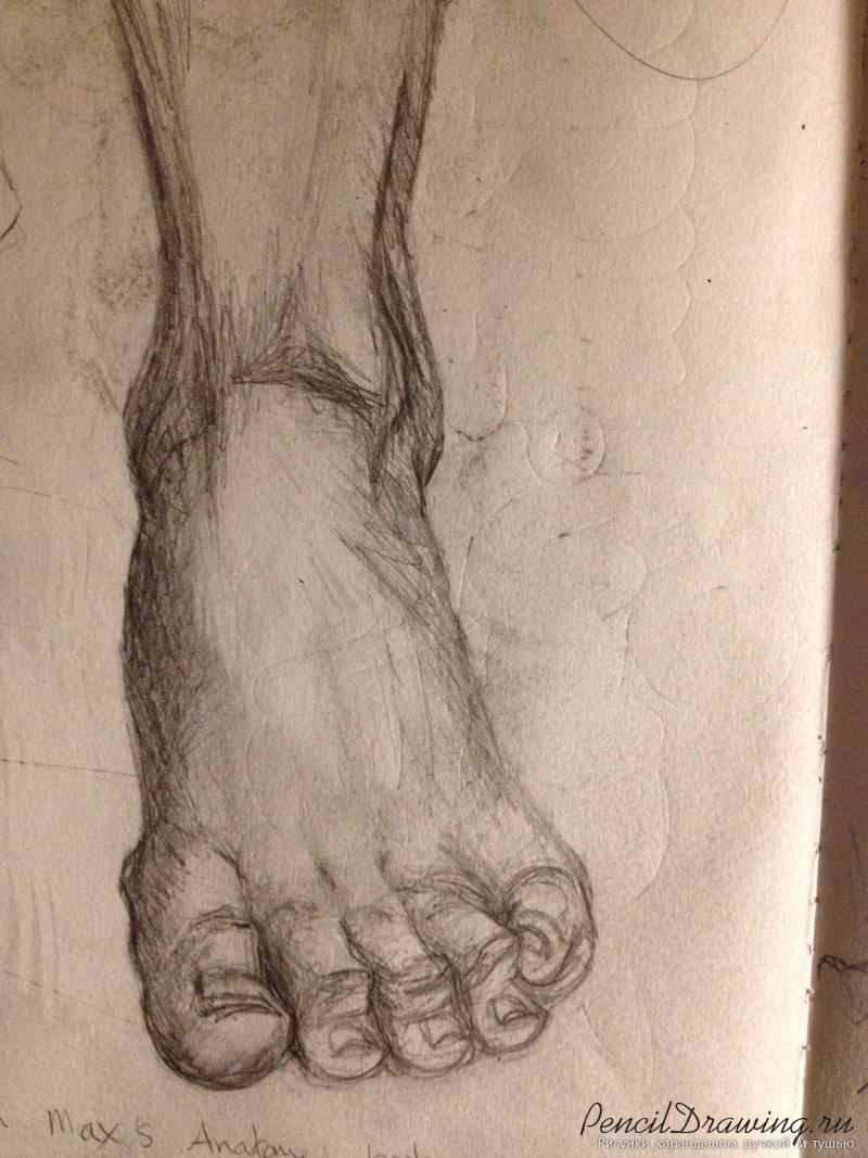 Картинки стопы карандашом
