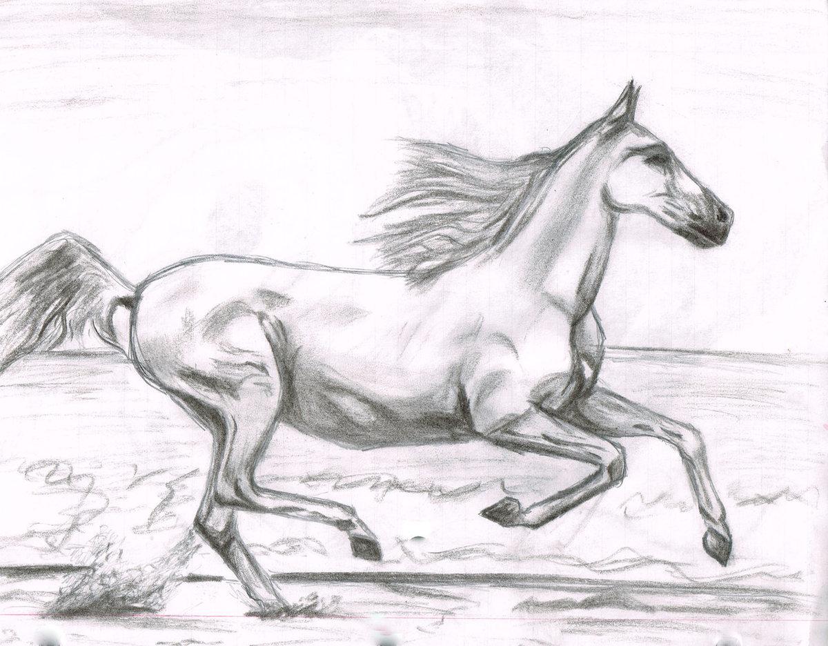 Рисованные картинки лошадей