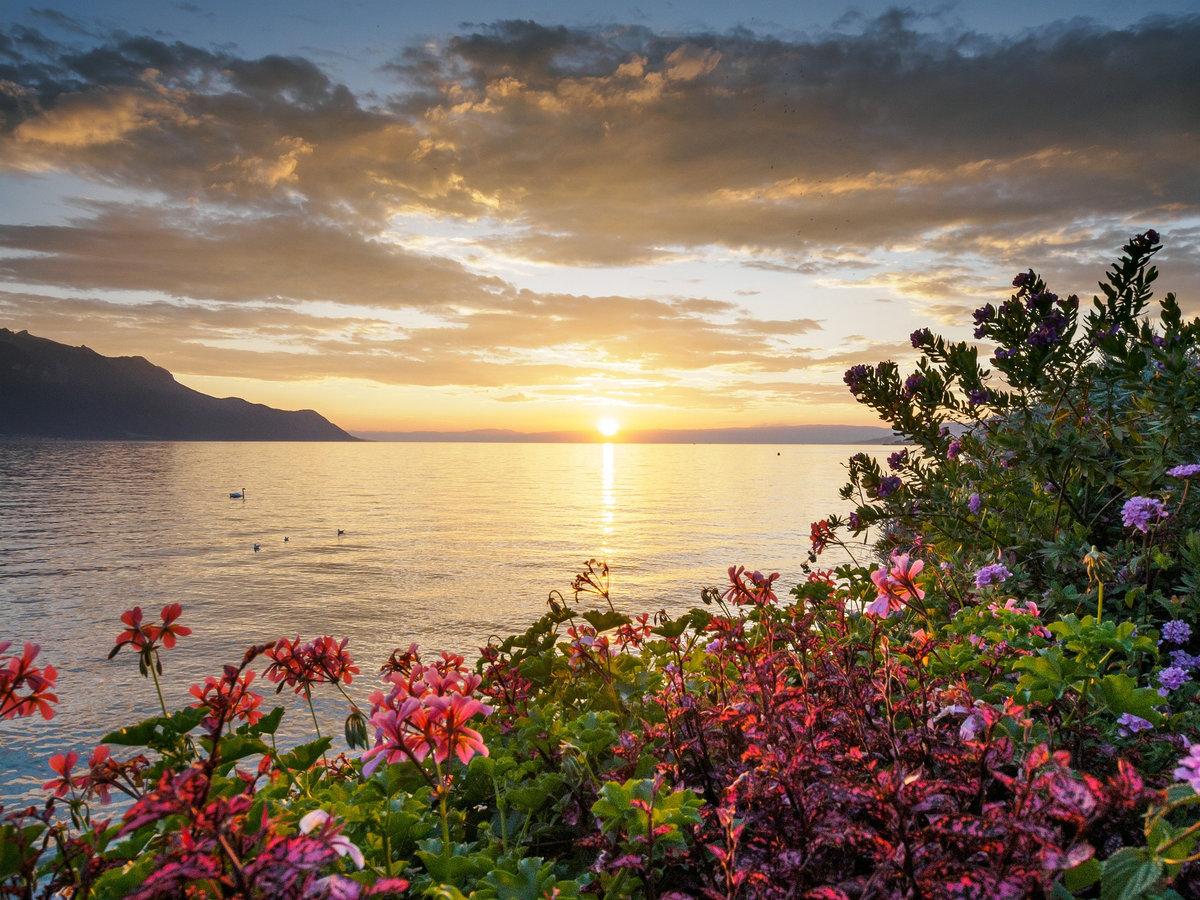 фото крым лето закаты и рассветы нравится твоя нежная