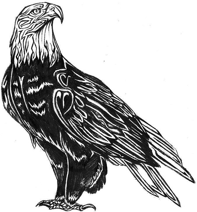картинки эскизы тату орла его рыночную куртку