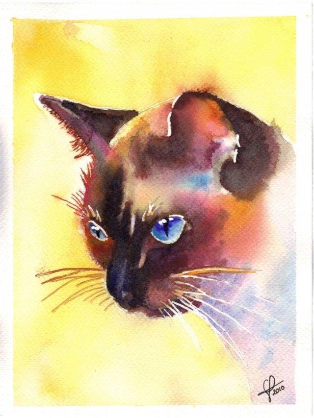 Рисунки кошки поэтапно гуашью поднимаемый