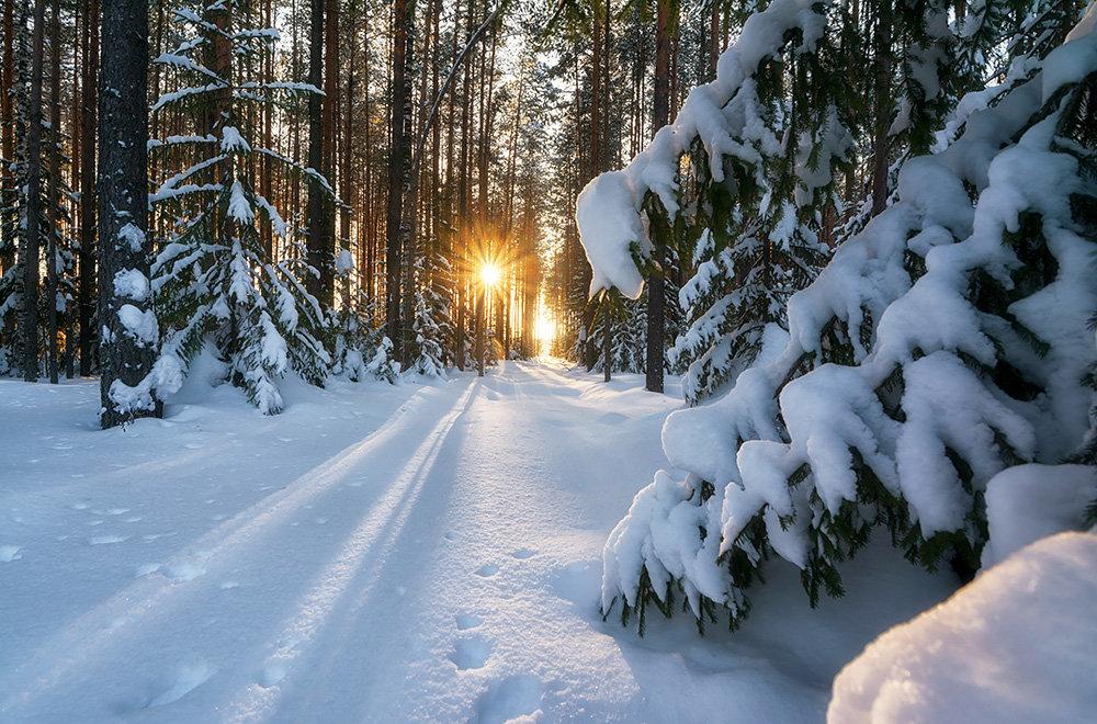 фото о зиме природа со стихами фото изделия