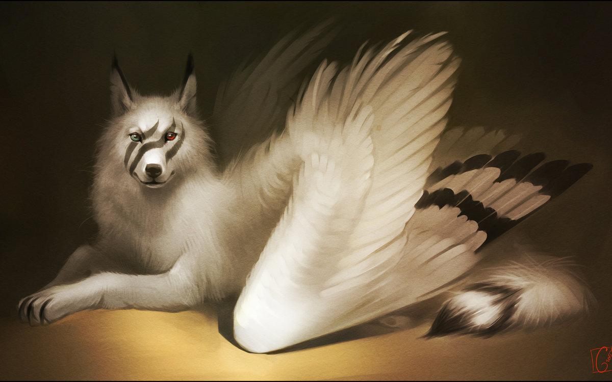 волк белый ангел картинка мнят себя богом