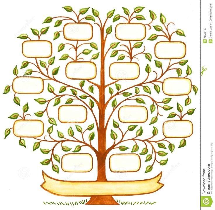 Árvore Genealógica Handpainted - Baixe conteúdos de Alta Qualidade entre mais de 64 Milhões de Fotos de Stock, Imagens e Vectore