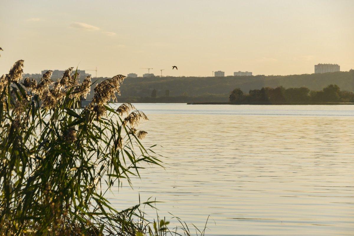 Воронежское водохранилище фото