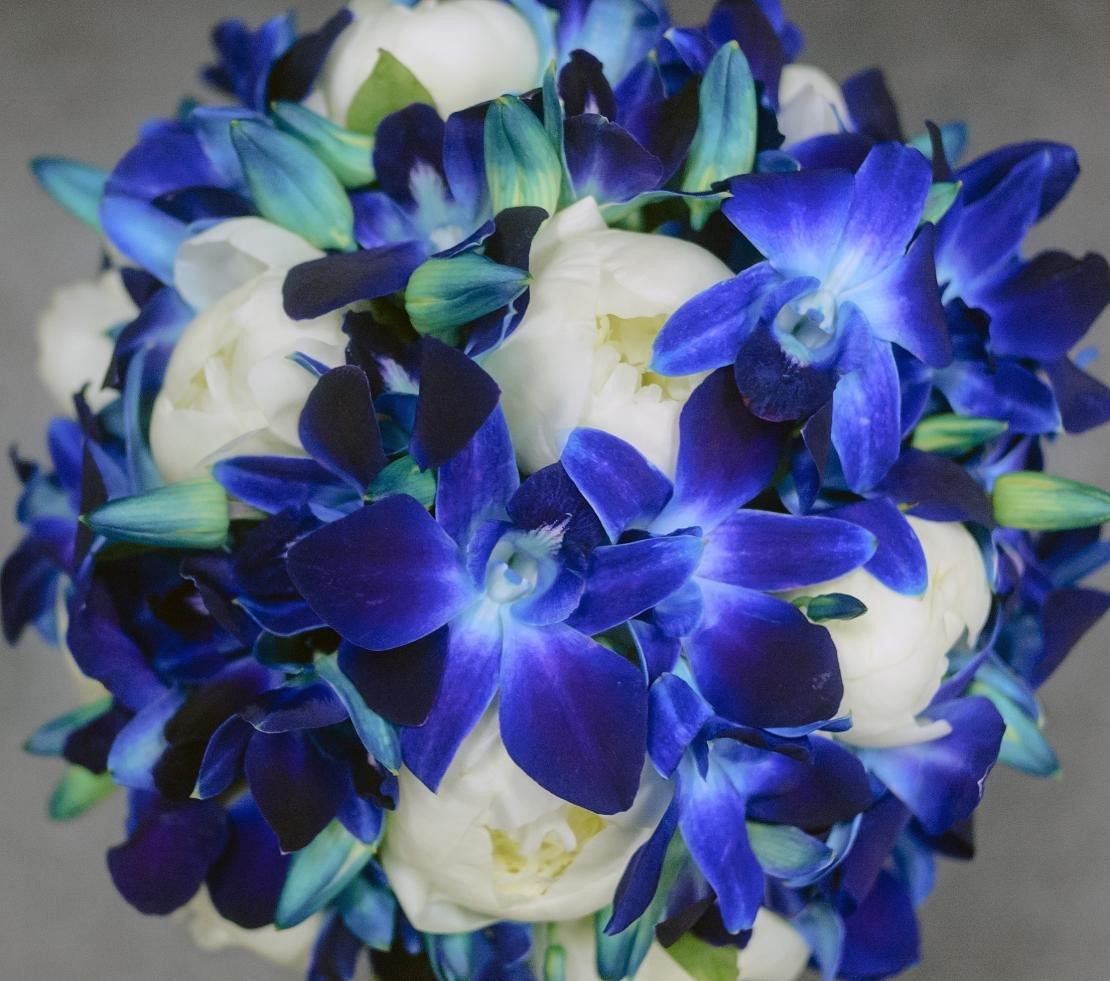 Купить букет с орхидея дендробиум синяя, уфе инорс купить