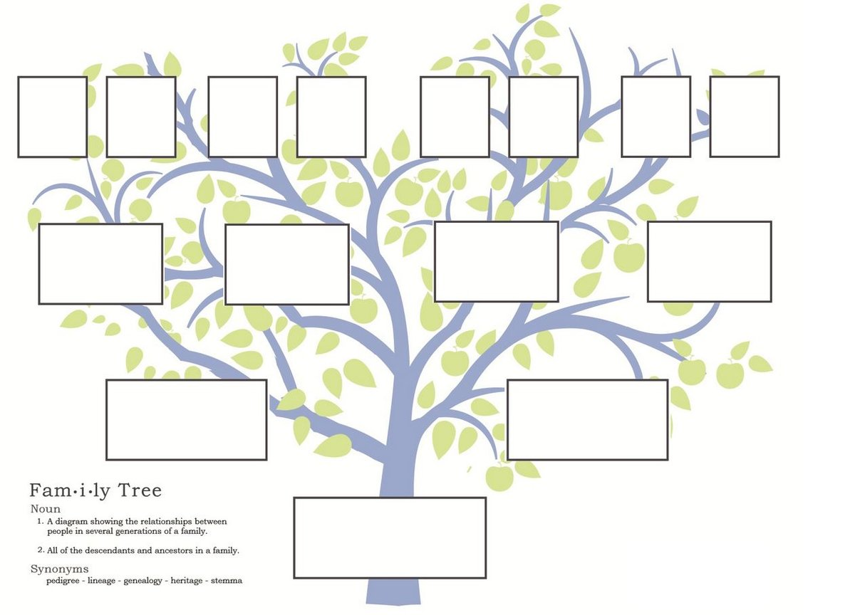 ancestry family tree template 28 images family tree template