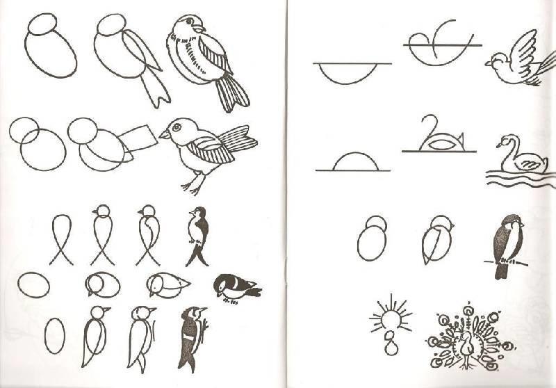 картинки схематических рисунков важно