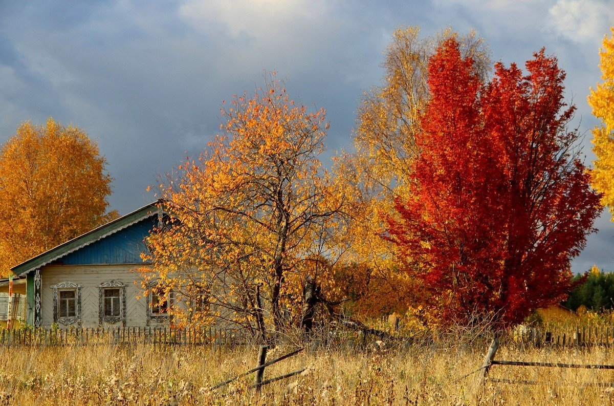 Осень картинки в деревне