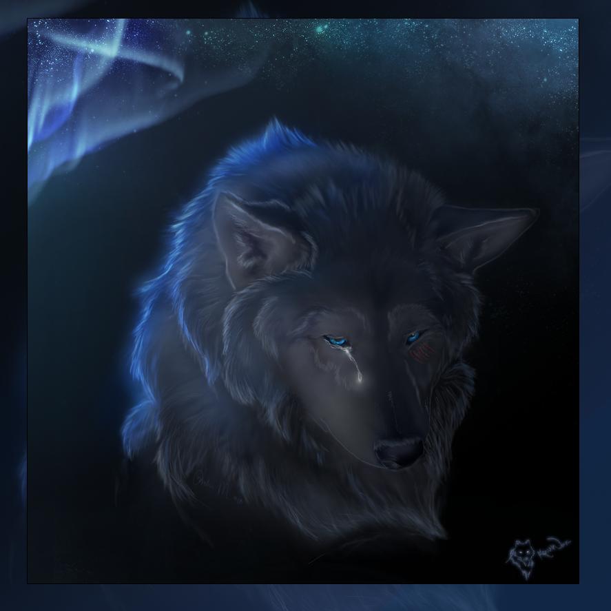 печальный волк в картинках фото малыша