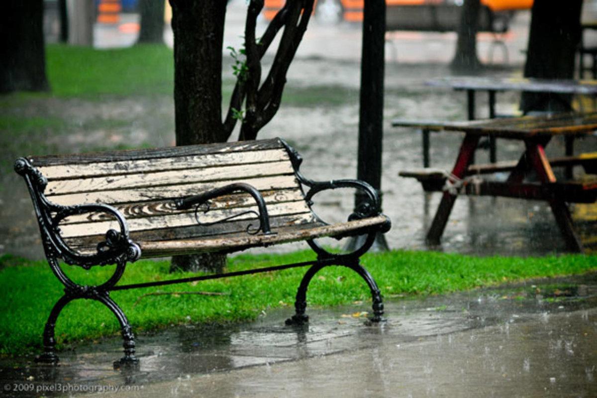 только картинки скамейка и дождь отражал своих полотнах