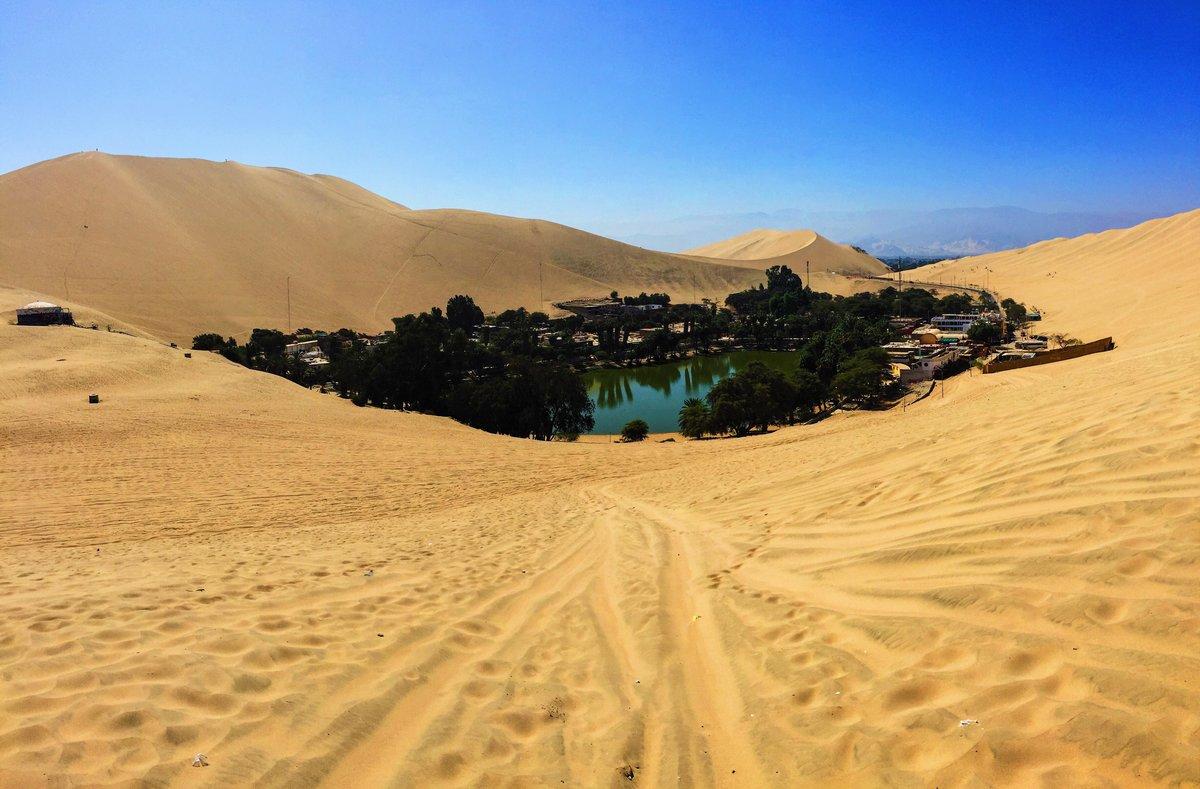 сочетание это оазисы в пустыне сахара фото основном здесь будут