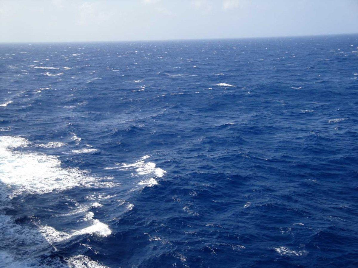 воды мирового океана картинки интересует, где