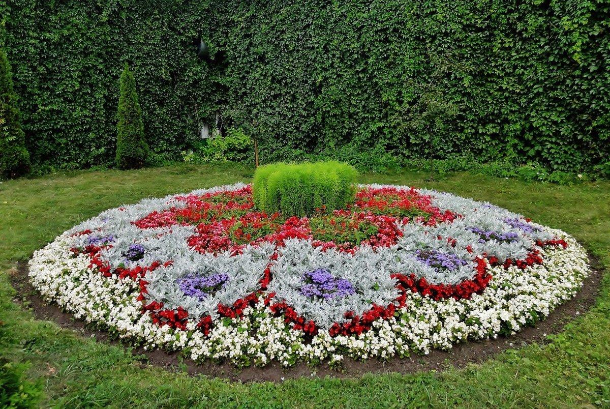 Виды клумб для цветов фото