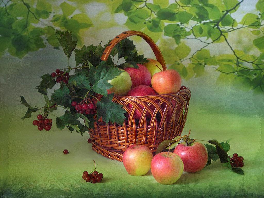 картинки с яблоками яблочный спас успехов твоих