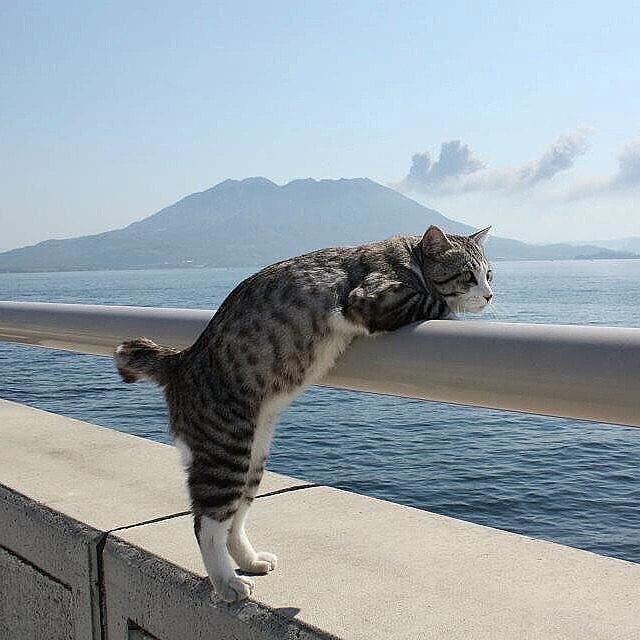 Отдых! Пожалуйста, не пролетай так быстро!! ❤