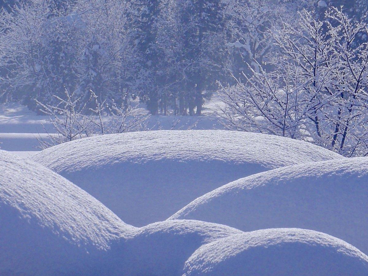 стильно, виды снега картинки растут