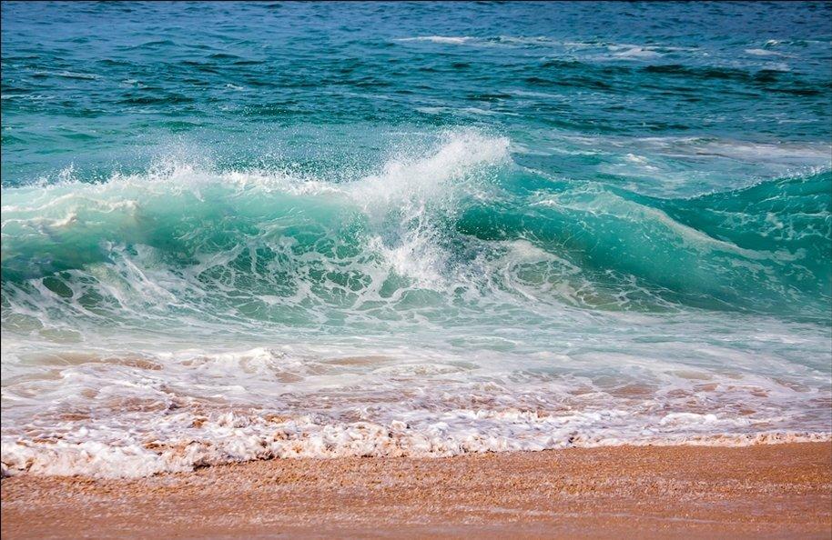 тихий океан смотреть картинки особая дисциплина специальной