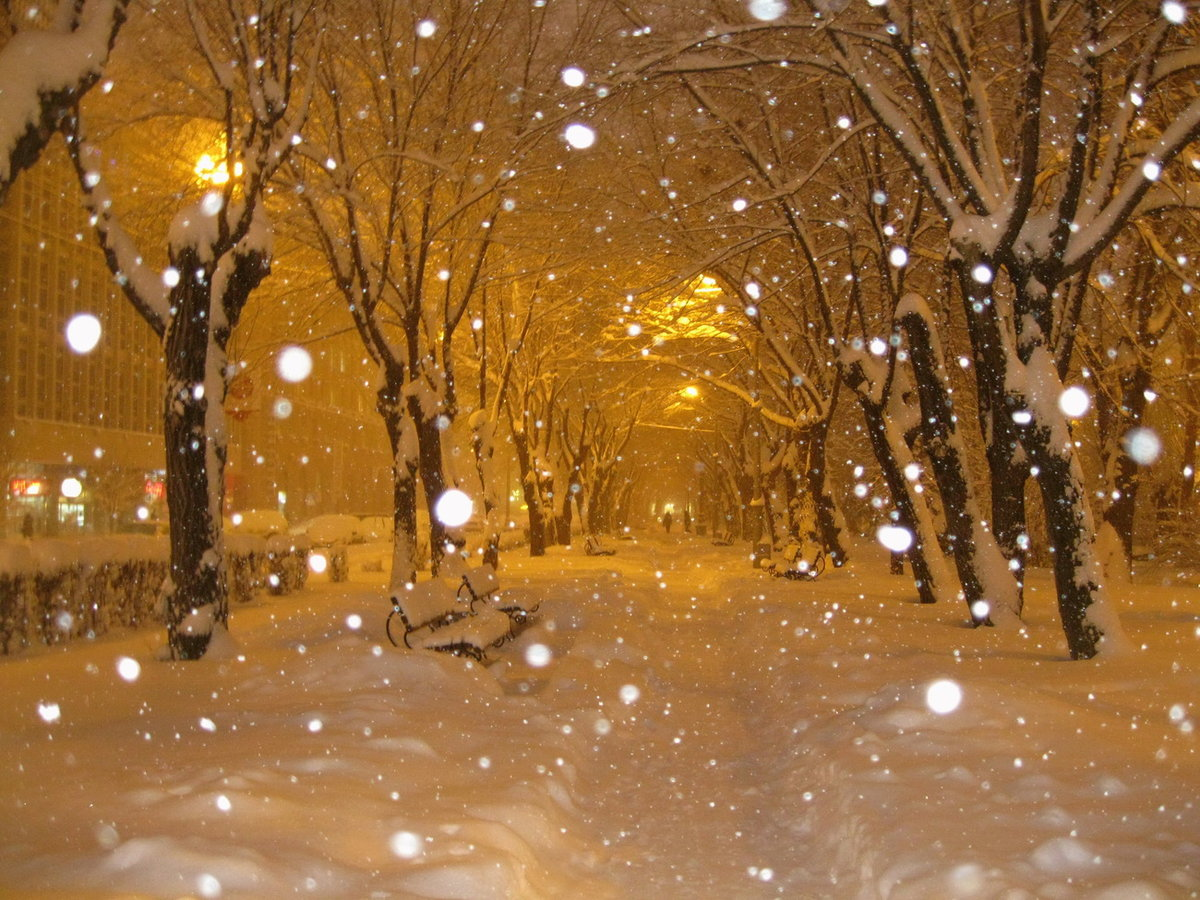 фото снег идет в городе фотомозаику, получите оригинальный