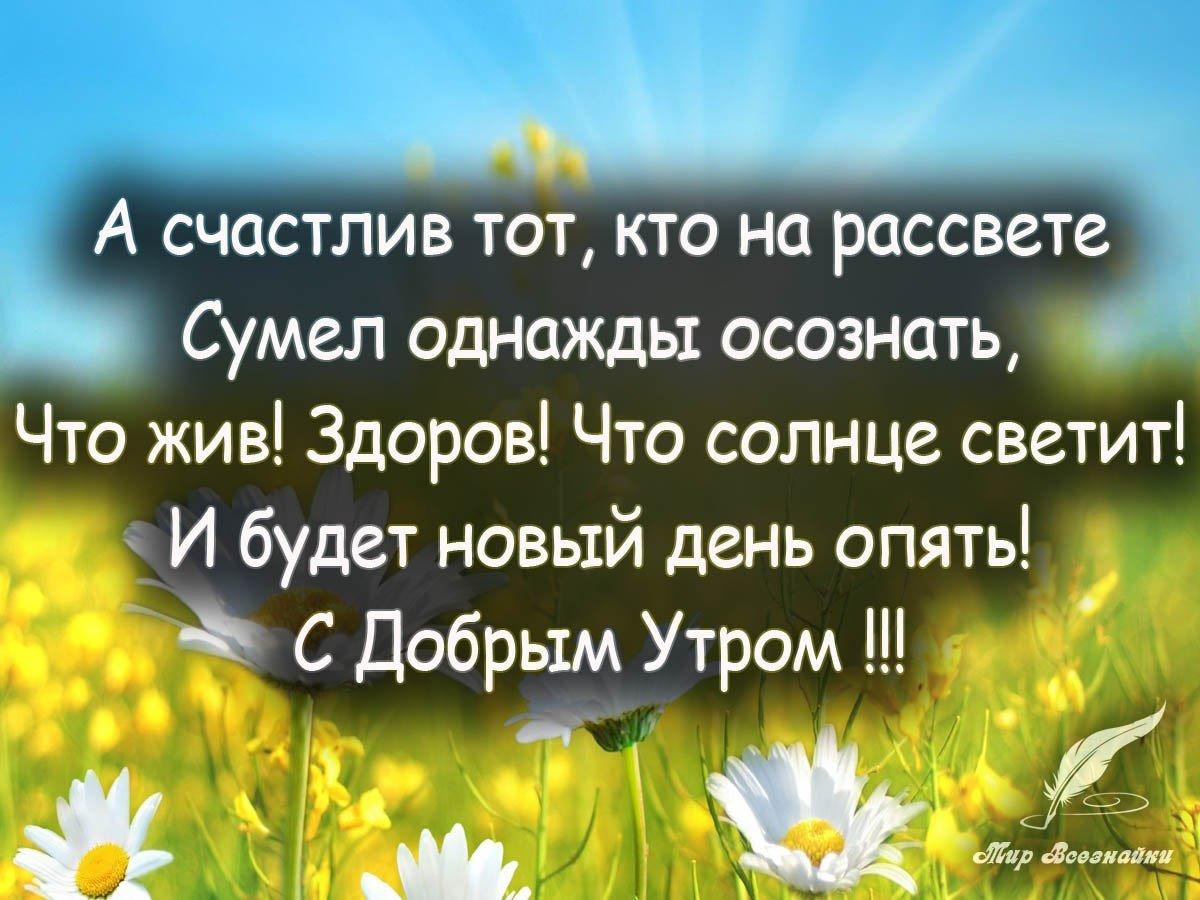 чуковского хорошее поздравление афоризмом олимпийский призер чемпион